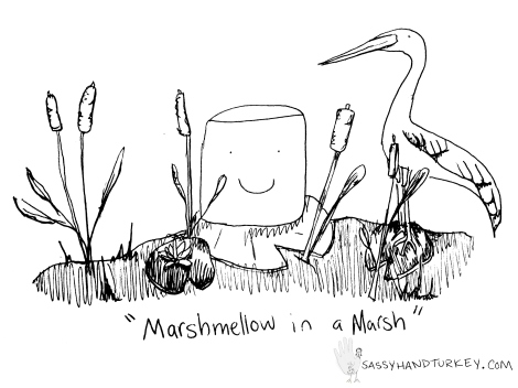 Marshmellow In A Marsh